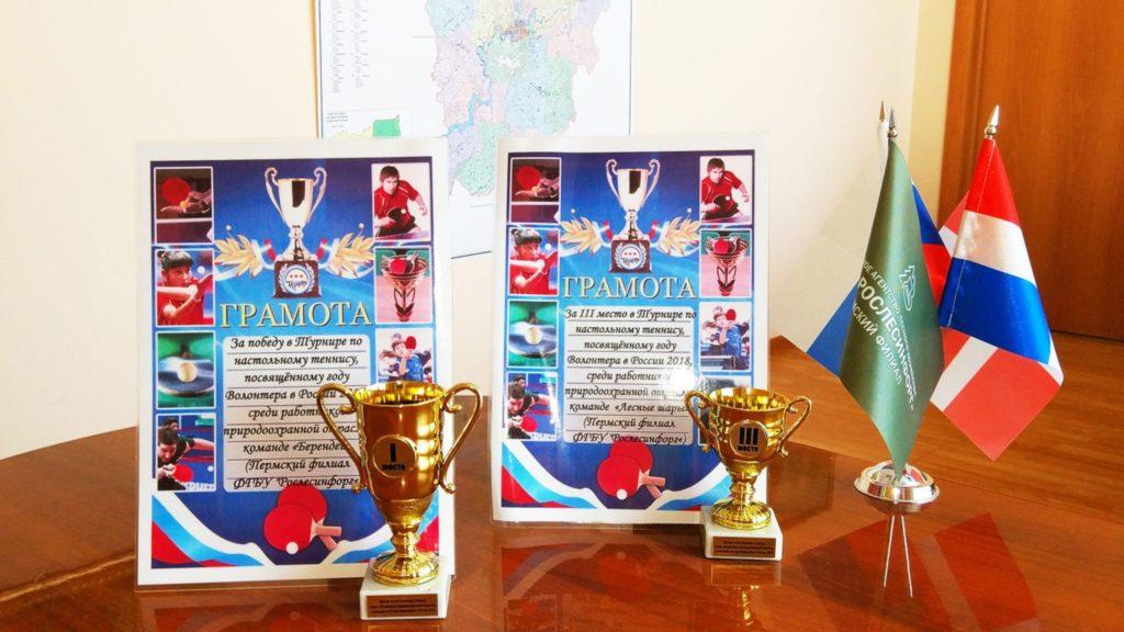 1-е место в турнире по настольному теннису среди работников природоохранной отрасли в Пермском крае
